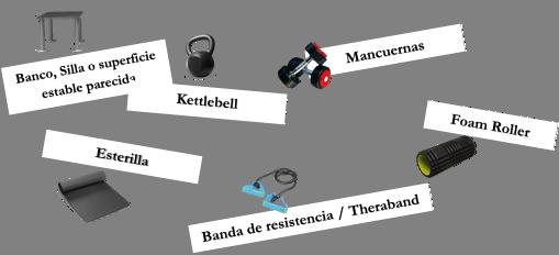 Estructura del entrenamiento en circuito
